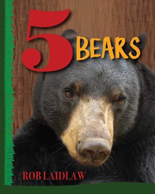 Book cover of 5 BEARS